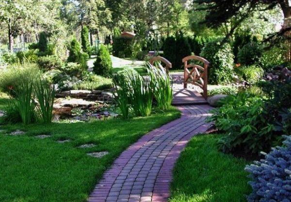 25 yard landscaping ideas curvy