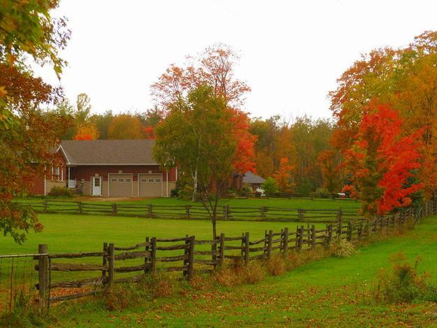 Landscaping Ideas For Colorful Fall Country Home Driveways
