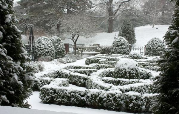 beautiful winter gardens
