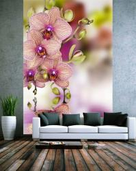 25 Ideas for Spring Decorating with Flowers on Walls