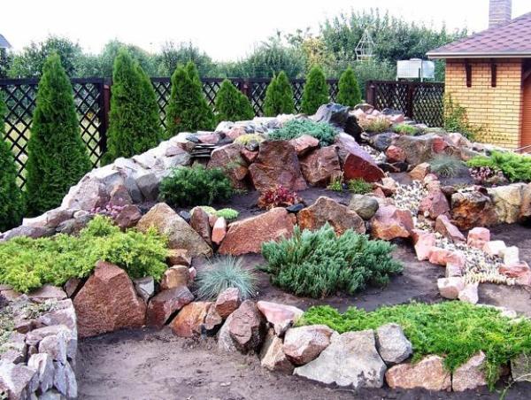blooming rock garden design