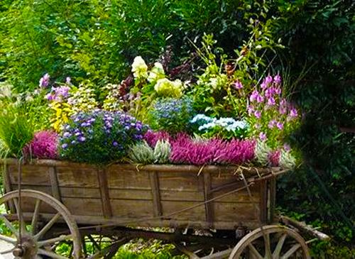 unusual flower beds and container