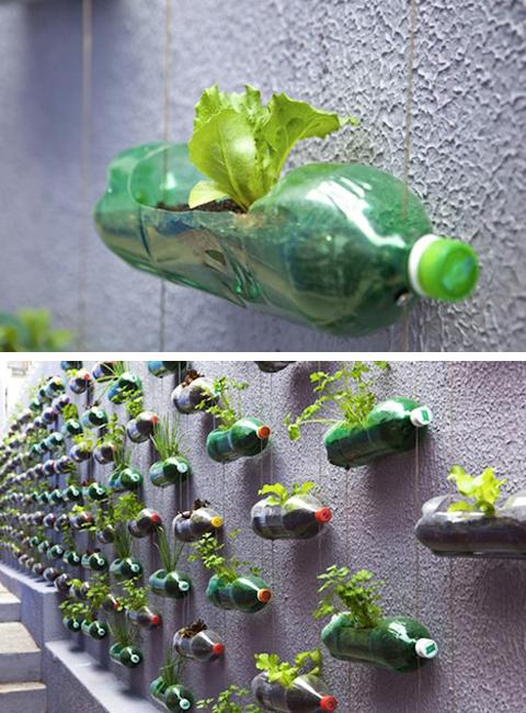 decorating ideas for the living room walls accent chairs contemporary how to recycle plastic bottles outdoor home ...