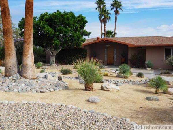 desert landscaping ideas save