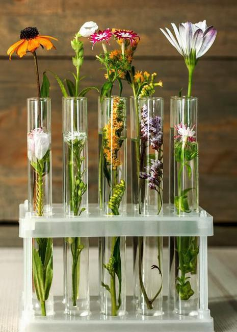 Original Home Decorations and Eco Gifts Test Tube Vases