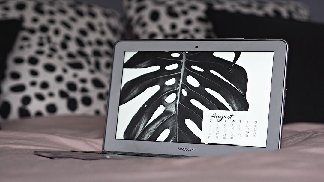 Download Monstera Desktop Screensaver Calendar