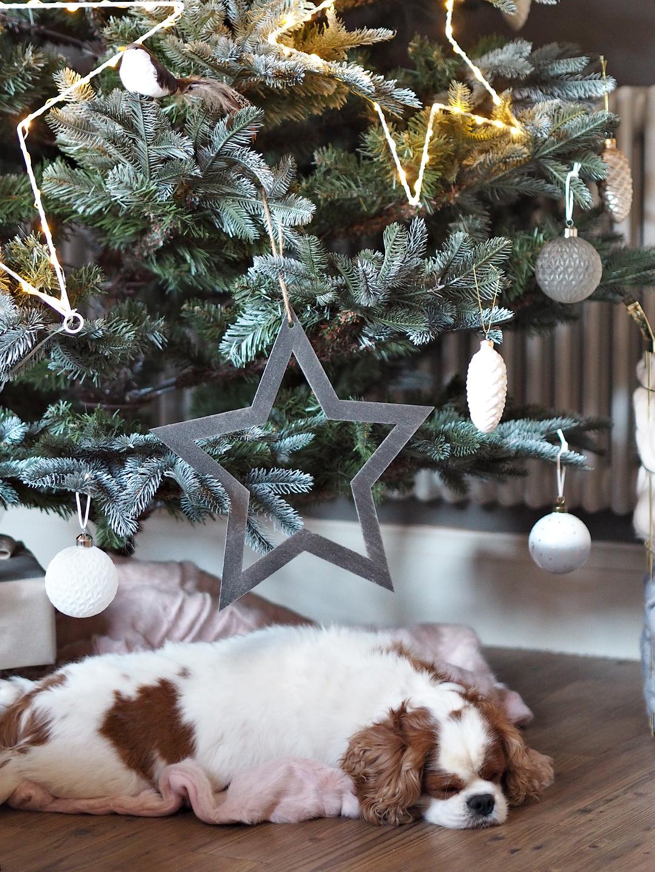 Cox & Cox Christmas Blush Scandi