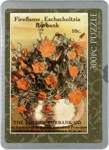 cover of the tin containing a puzzle featuring a vintage poppy seed packet