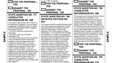 Photo of Ballot for November 8