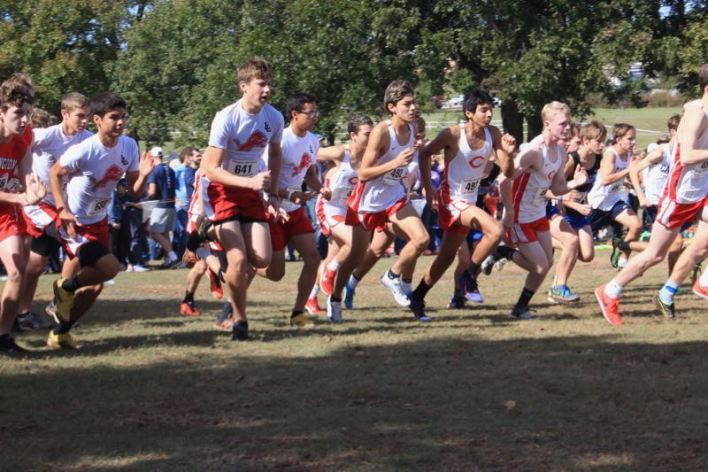 Luther Lions Cross Country at State