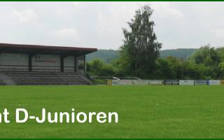 Bild SGL Fußball Spielbericht D-Junioren
