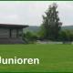 Bild SGL Fußball Spielbericht E-Junioren