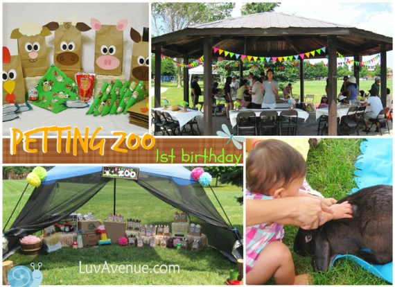 Petting Zoo Birthday Party Luv Avenue
