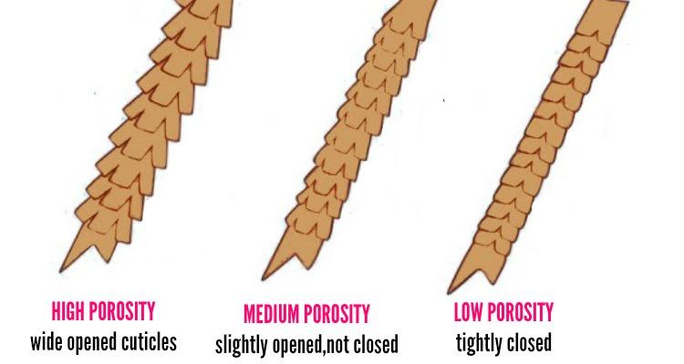 Natural Hair Porosity