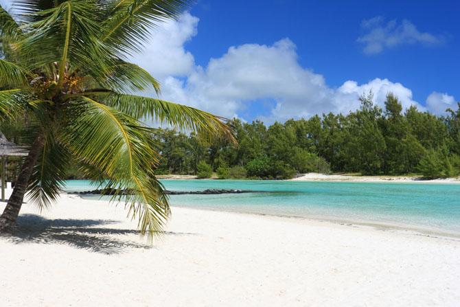 Experience the Beautiful Island of Mauritius 6