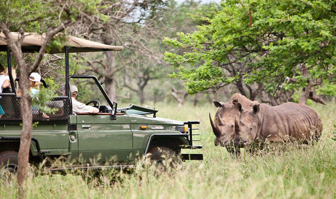 Rhino River Lodge An Exclusive African Escape 1