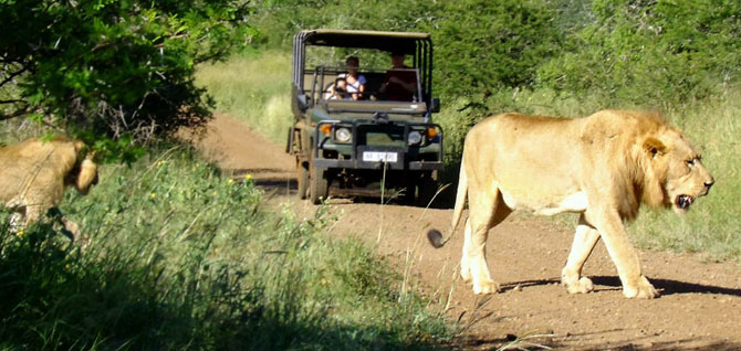Rhino River Lodge An Exclusive African Escape 10