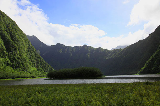 Where to Go This Week La Réunion 5
