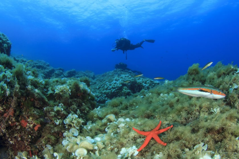 Mauritius watersports opportunities scuba diving