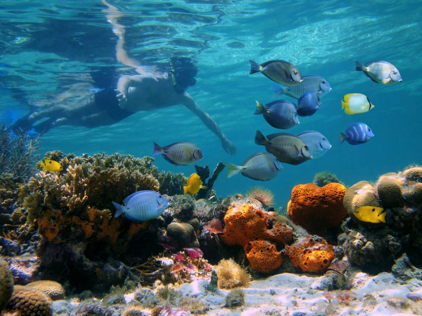 Mauritius watersports opportunities snorkeling