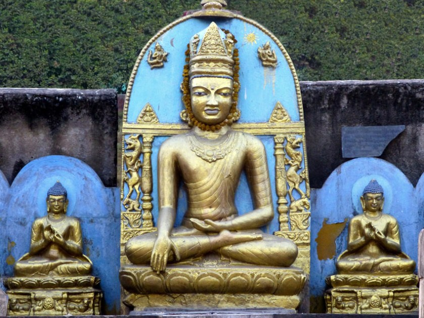 Bodhi Tree at Bodhgaya 3