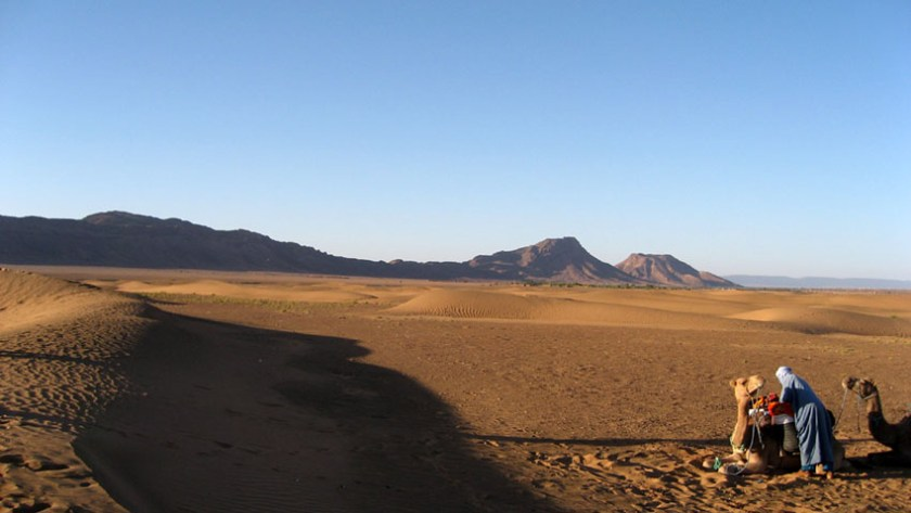 Camel Trek Across the Sahara Desert 1
