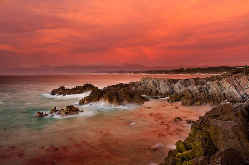 Grootbos Private Nature Reserve South Africa 1