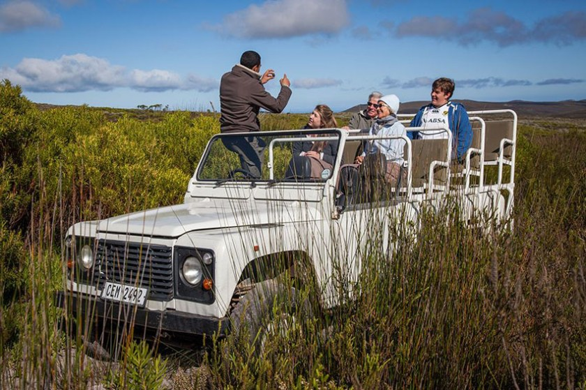 Grootbos Private Nature Reserve South Africa 12