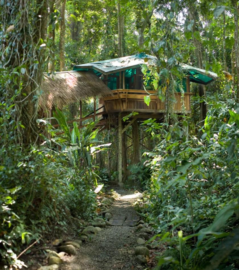 Costa Rica Jungle Retreats Treehouse Lodge 1