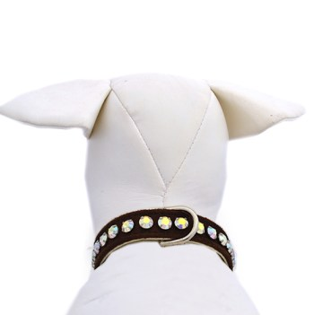 dog collar chocolate