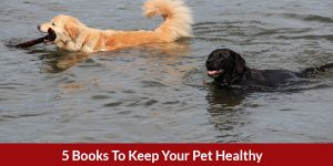 5booksdoghealthy