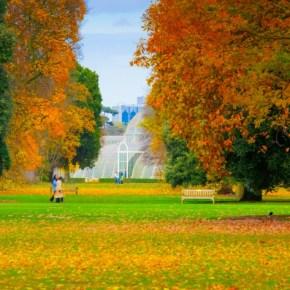 La culture à Londres cette automne