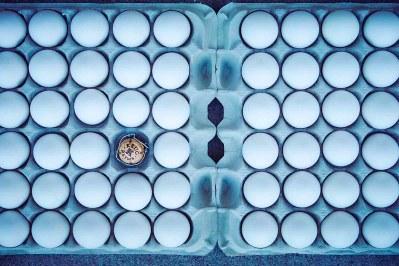 11_krug-egg-bucket