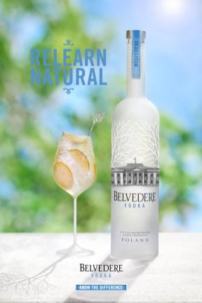 Cocktail Belvedere 2017 - Citron et Raisin Ambiance