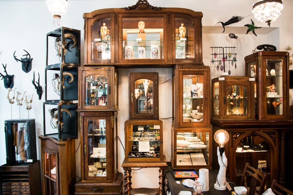 Curieux Le Cabinet De Curiosite Contemporaines Luxsure