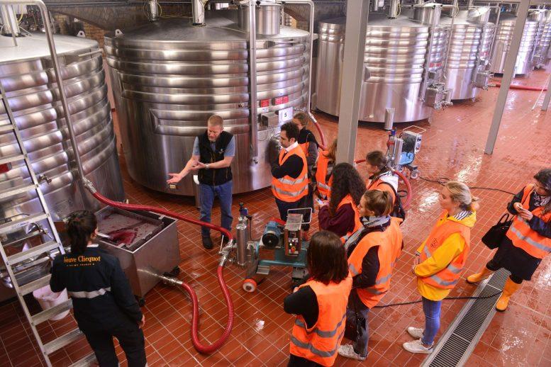 Vendanges Veuve Clicquot - photo Michel Jolyot (307)