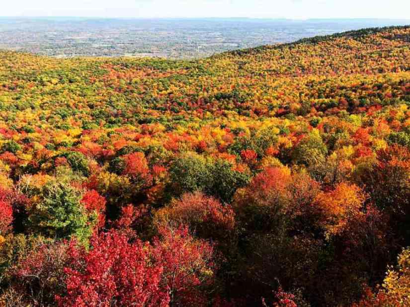 Minnewaska-State-Park-NY