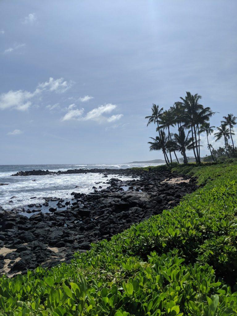 Kauai_Beaches