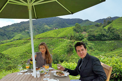 The second of our Special Experiences was the Signature Picnic Experience, this was to take place within the renowned Boh Tea Plantation a further 1000 feet up in the Highlands.