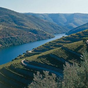 The next stage of my splendid break allowed me to venture to the North of Portugal to explore the Douro Valley wine making region