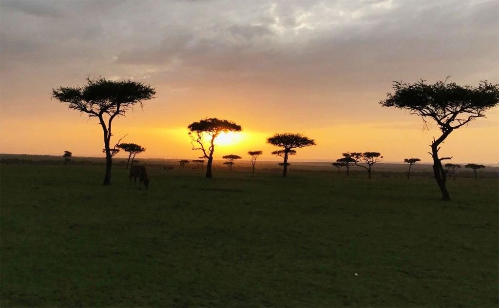 The Maasai Mara at dusk