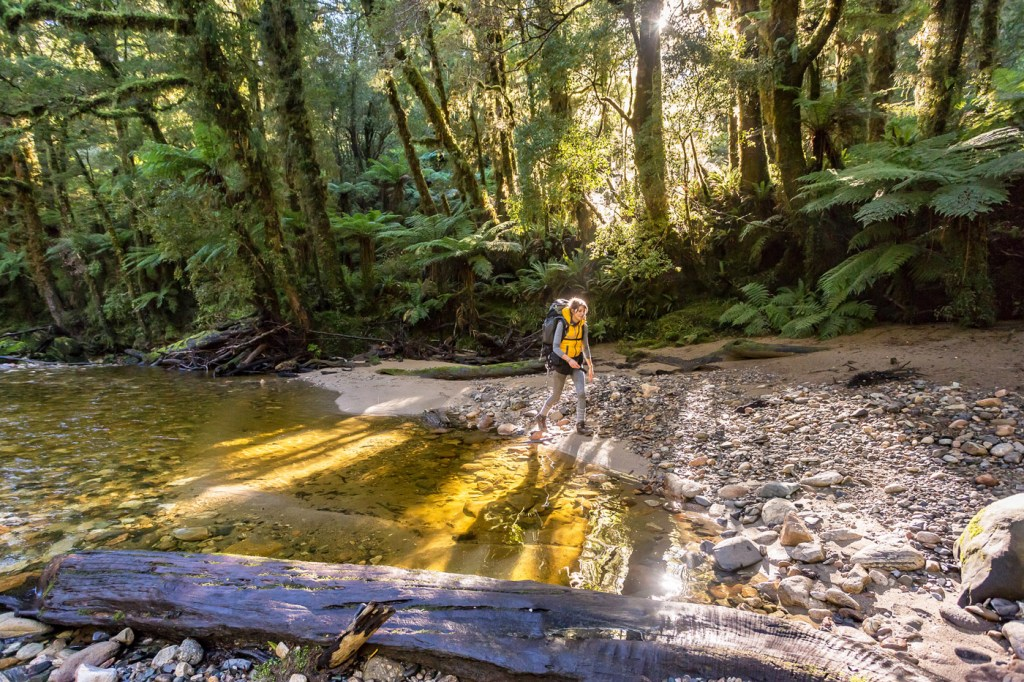 Walking along the Paparoa Trail in New Zealand