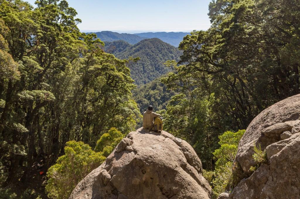 Paparoa Trail New Zealand's Great New Walk Officially Opens