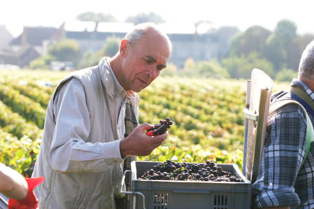 Aubert de Villaine, the co-director of Domaine de la Romanée-Conti vineyards