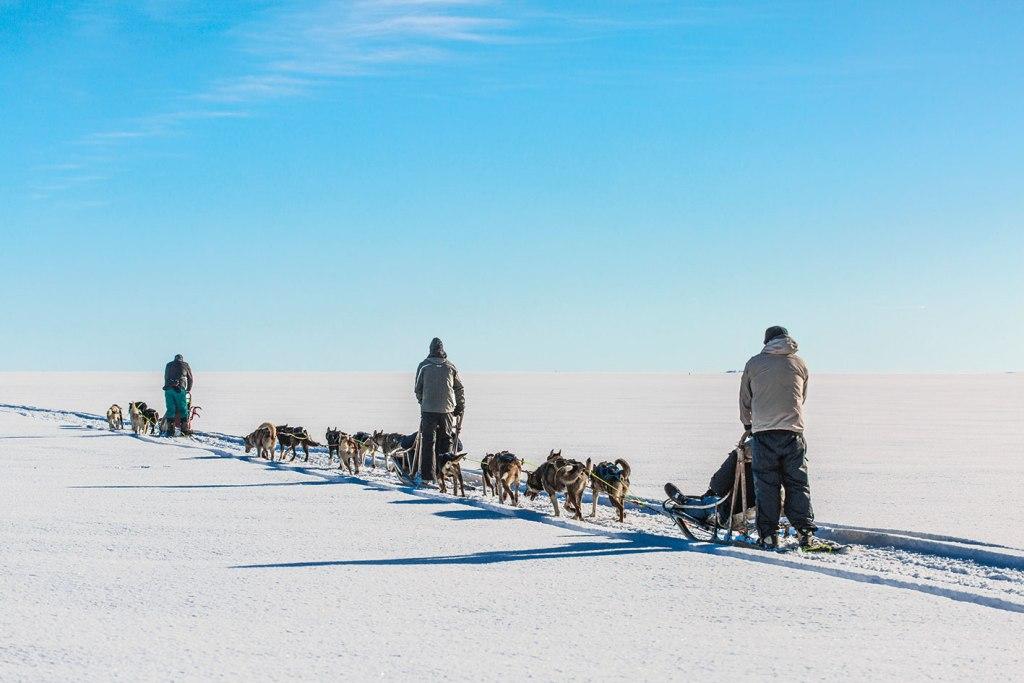 Off the Map Travel Scandinavian Six Dog Sledding