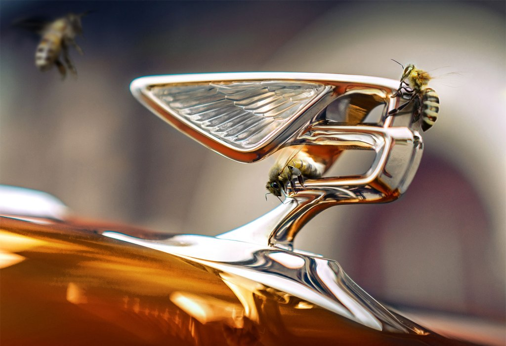 There is a Real Buzz at Bentley Motors as They Return to Production