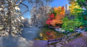 Lithia Park by Neal Thompson