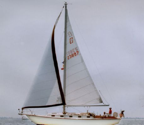 1980 Cape Dory 36 Boats Yachts For Sale