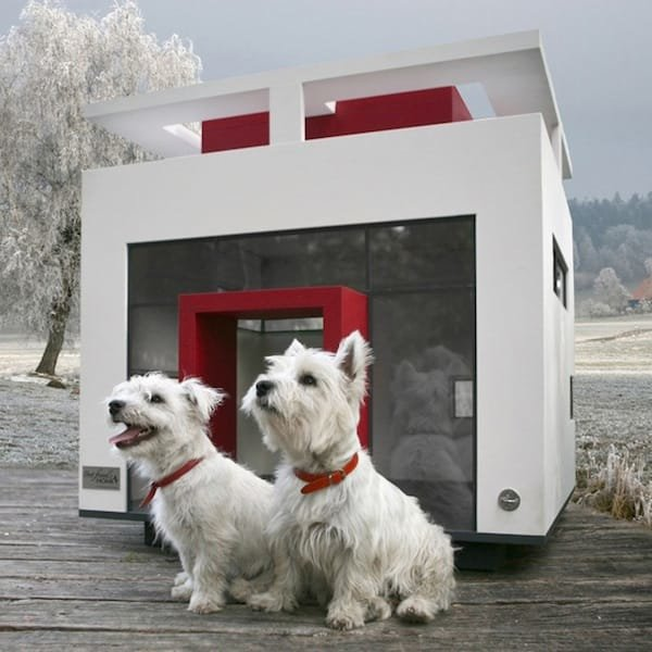 Dog Mansion Cubix