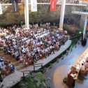Cancun-Riviera Maya Wine & Food Fest Star Chefs Panel